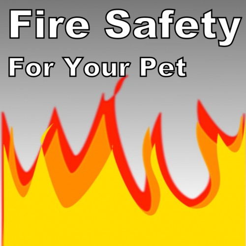 Fire Safety for Pets